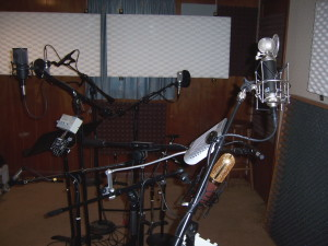 Tesco Productions microphones